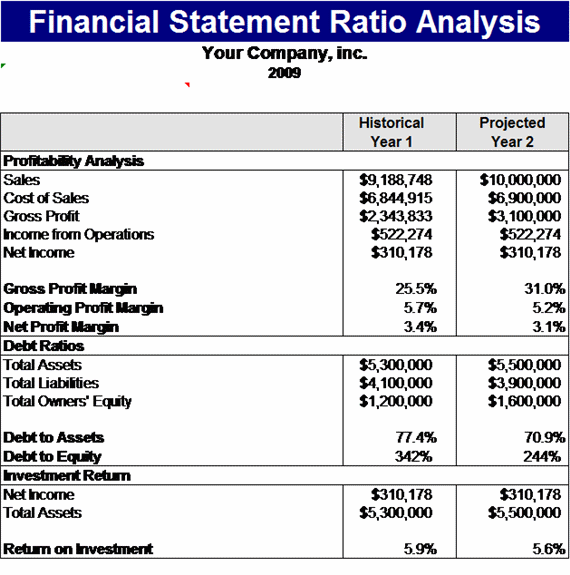 financial statement ratios template