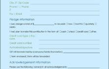 Donation Form Sample